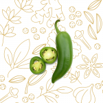 LINEA-SELECTION_peperoncino-verde-jalapeno