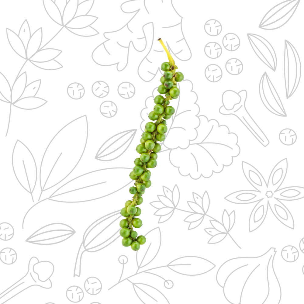 PEPE_verde-salamoia