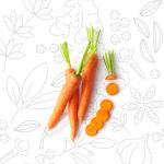 VERDURE-E-ALTRO_carota