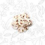 VERDURE-E-ALTRO_funghi-porcini-fette